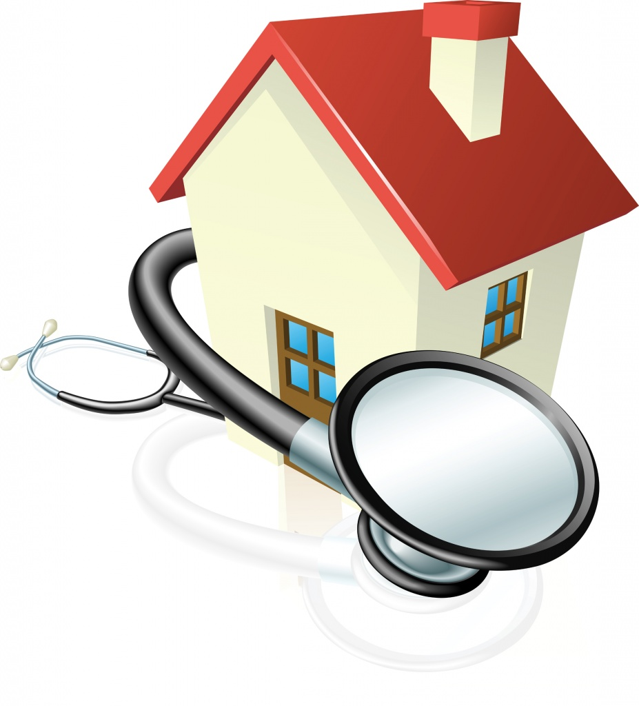 house_health_check_2011.jpg